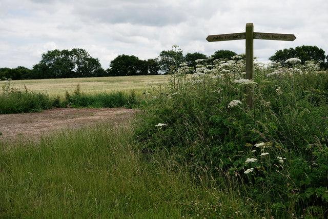 Path Junction Near Woldingham