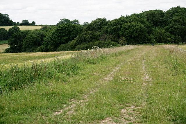 Farm Track Near Woldingham