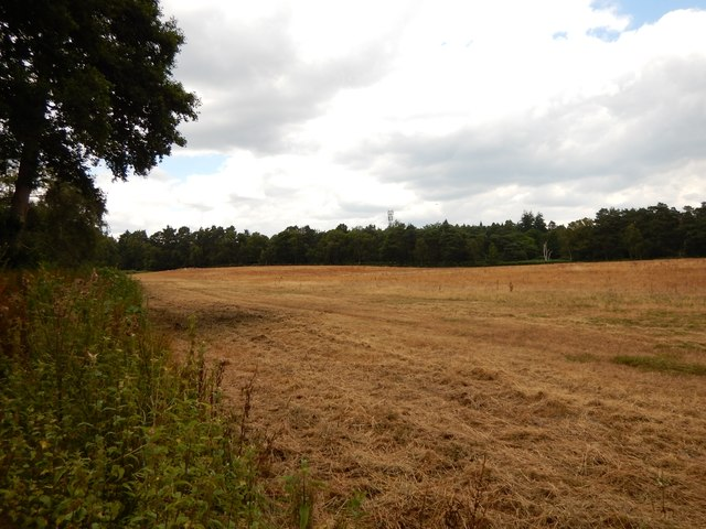 Field next to the A322