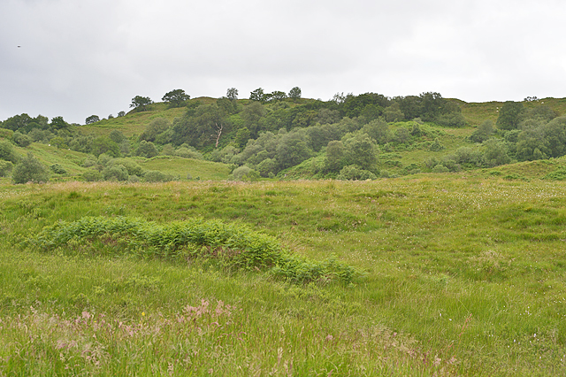 Moorland south of Connel