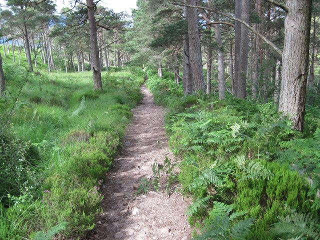 Path to car park near Abhainn Coire Mhic Nobuil