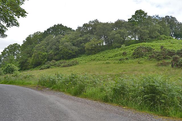 Trees on the hill, Barrancalltunn