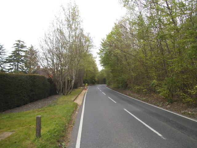 Beech Avenue, Effingham