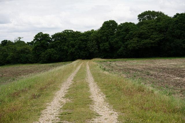 Path Near Tatsfield