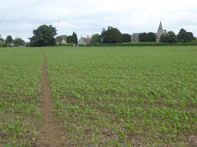 Path through the maize, Hilperton