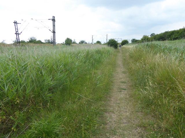 Path near Benfleet Downs