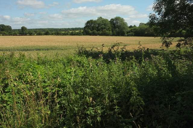 Farmland near Croome Farm