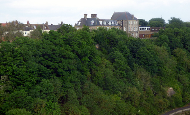 Tweed View Care Home