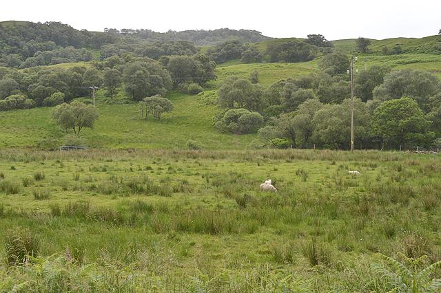 Looking south across Glen Lonan