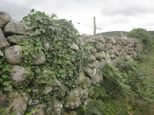 Dry stone wall near Tal-y-sarn, Rachub