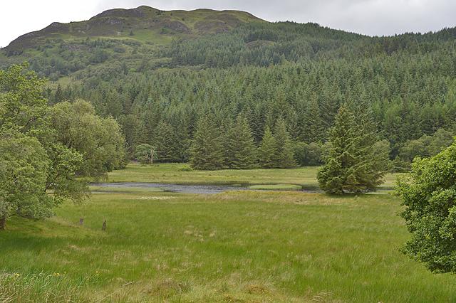Lochan on the River Lonan