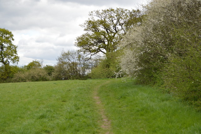Footpath, Barn Hill Open Space