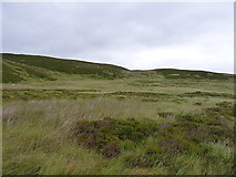 SH9320 : Moorland below Carreg y Bîg by Richard Law