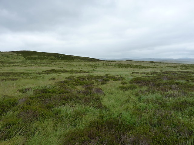 Down the Hirddu Fach