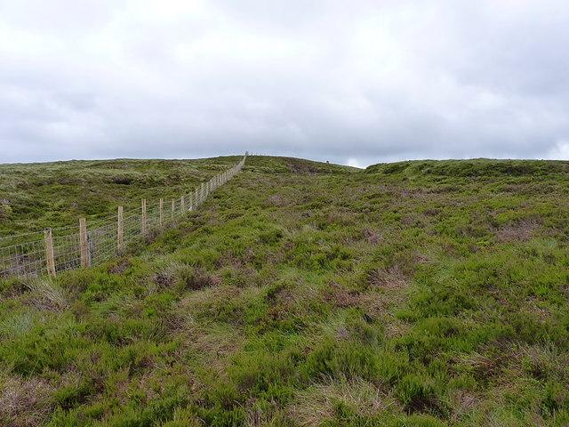 Approaching Mynydd Coch from the SW
