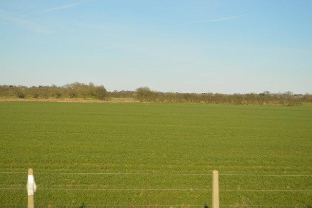 Cambridgeshire Scenery