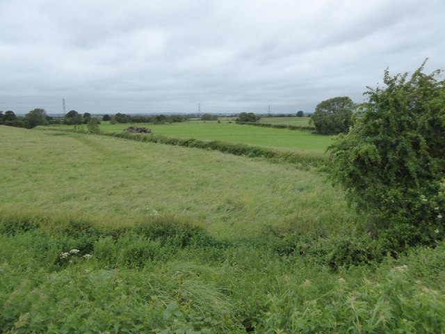 Fields between Semington and Outmarsh