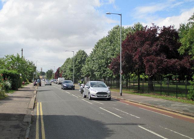 On Coleridge Road in July
