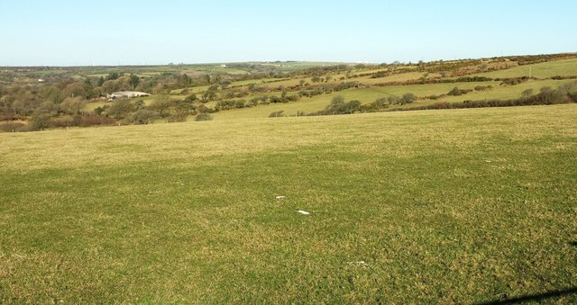 Pasture fields near Moorgate