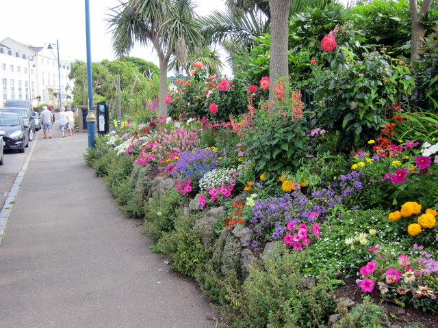 Den Crescent Flower Border Teignmouth