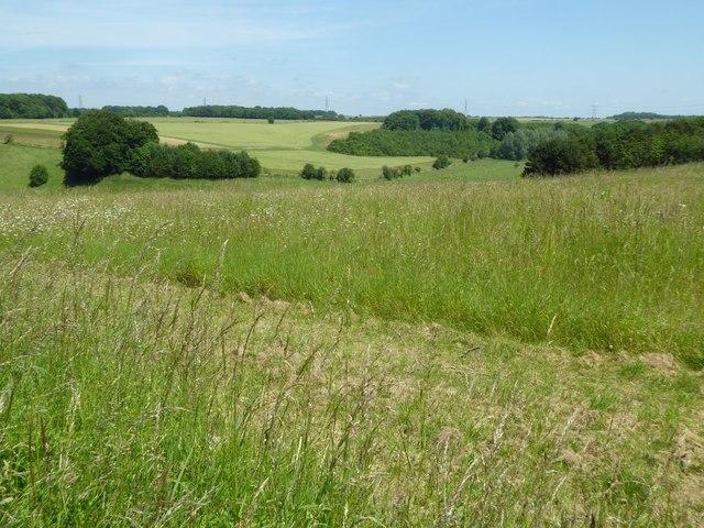 Farmland in the Leach valley