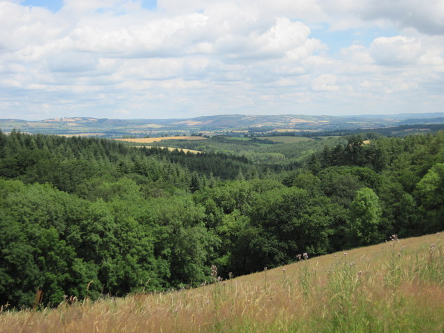 View across the Exe Valley towards the Blackdown Hills