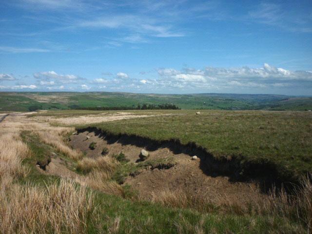 Moorland erosion above Ireshopeburn
