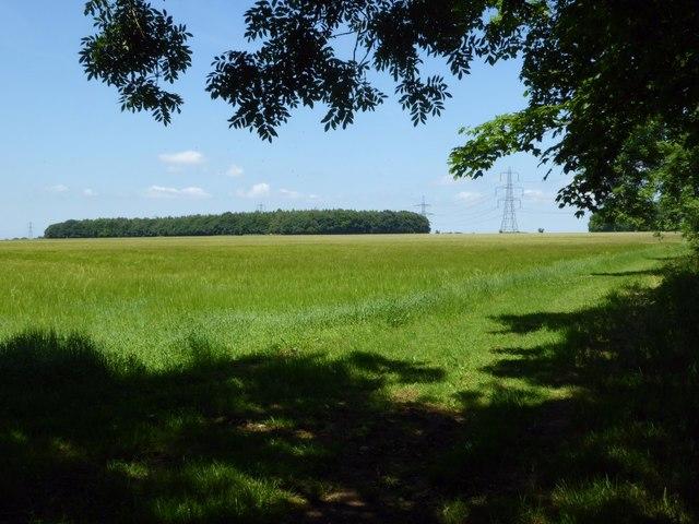 View to No Man's Land Plantation