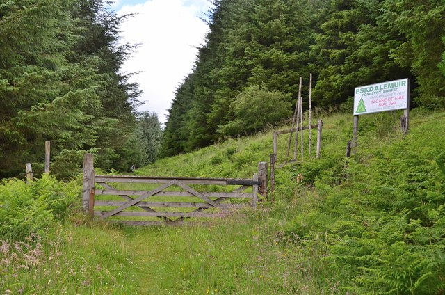 Gate into Craig Douglas Forest