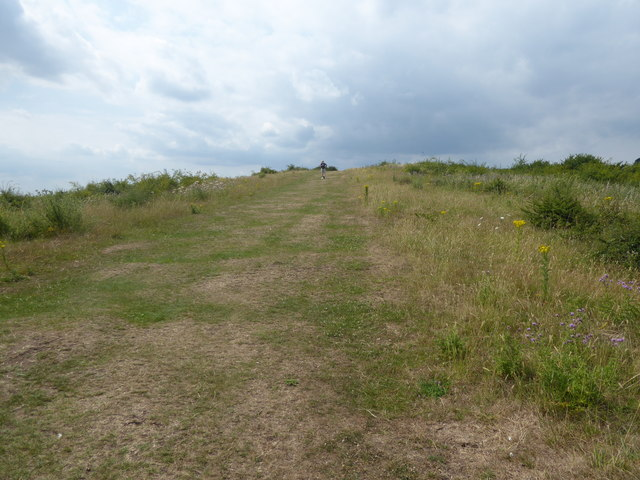 The Saffron Trail on its way up to Hadleigh Castle