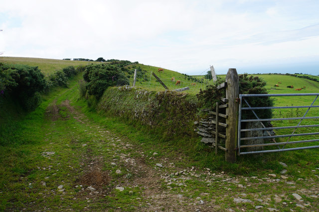 Farm track off Lydiate Lane