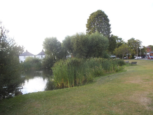 Pond on West End Common, Esher