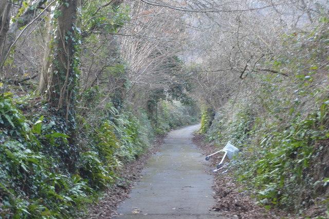 Footpath in Estover