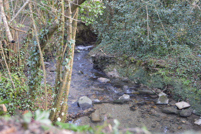 Small stream by Blunts Lane