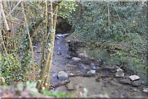 SX5058 : Small stream by Blunts Lane by N Chadwick