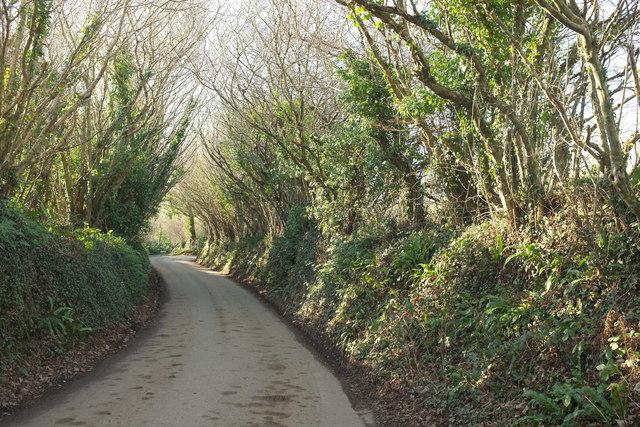 Lane near Tregreenwell