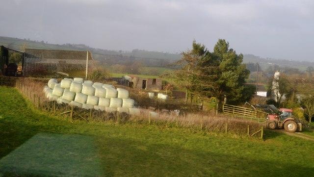 Bales, Lower Ashridge