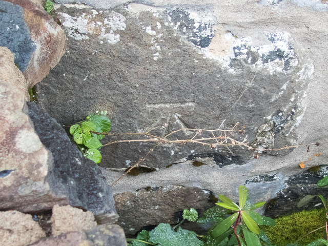 Benchmark over the wall