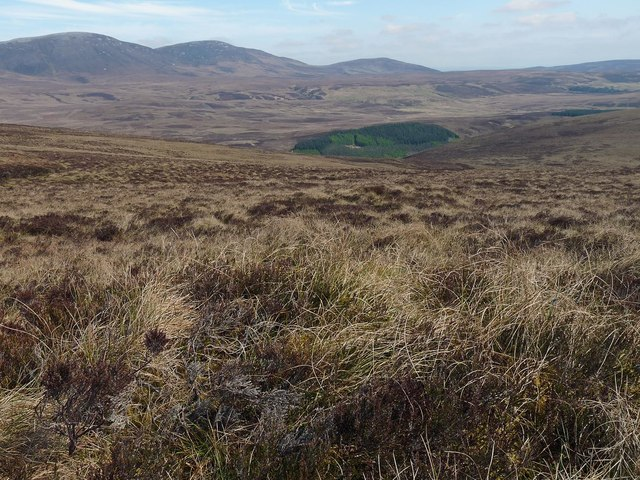 View across moorland from the eastern slopes of Cnoc Allt na Beithe, Caithness