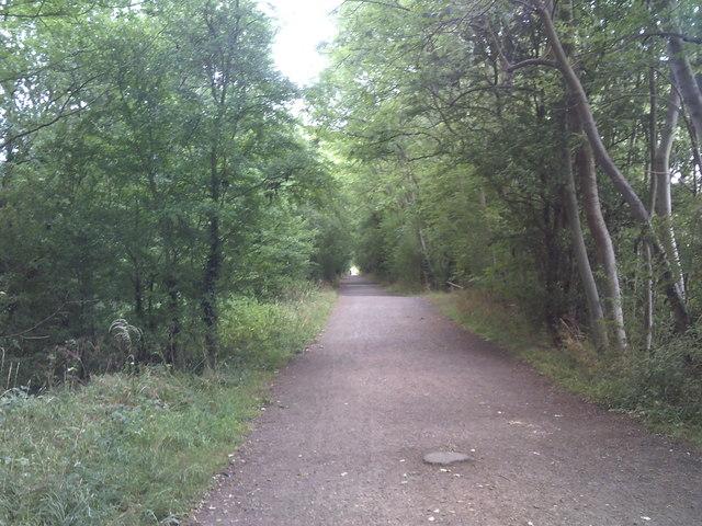 Railway Path View