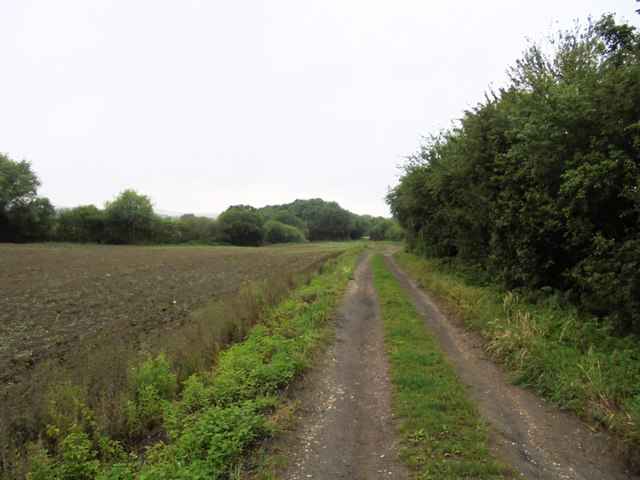 Cart Track , North Elmsall