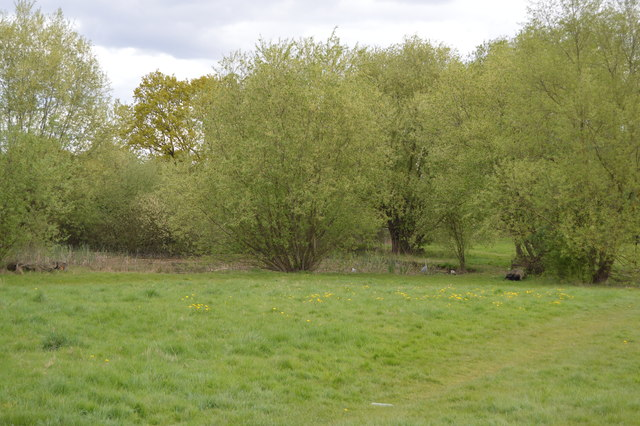 Pond, Barn Hill Open Space