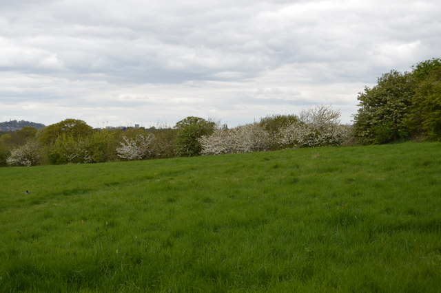 Fryent Country Park