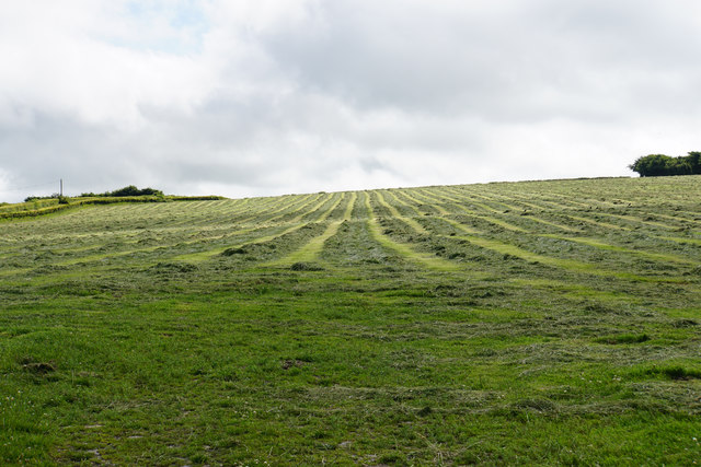 A field of cut grass by Caffyns Cross