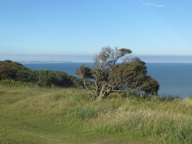 Looking towards Fairlight