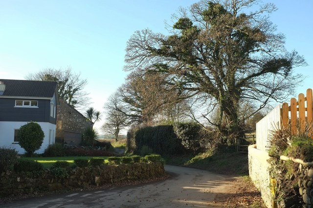Lane west from Michaelstow
