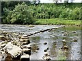 SE0262 : Stepping stones over the River Wharfe by Graham Hogg