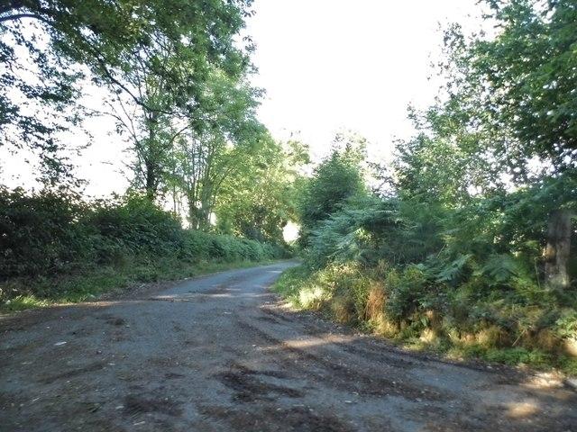 Track off Holtsmere End Lane