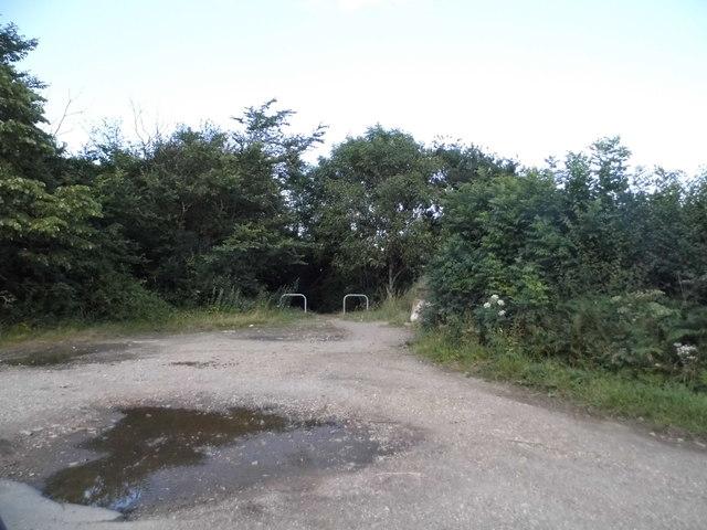 Path entrances in Trowley Bottom