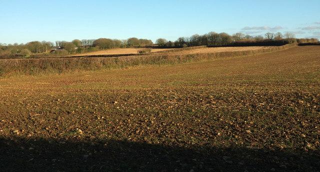 Arable farmland at Trevenning
